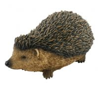 Large Hedgehog